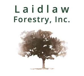 Laidlaw Forestry, Inc.
